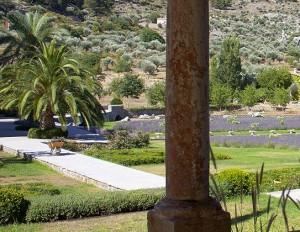 Garden DEsign Mallorca