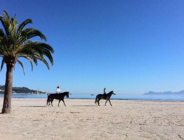 Mallorca Beach House Repossession