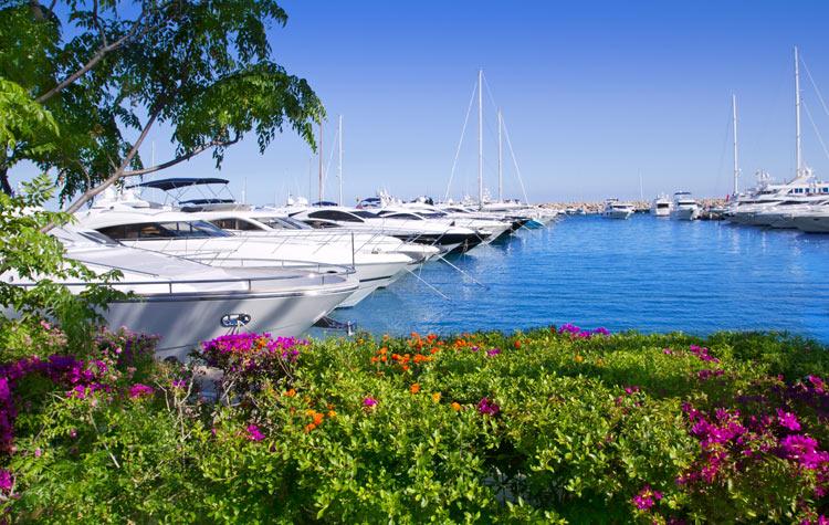 Yachting scene in Mallorca