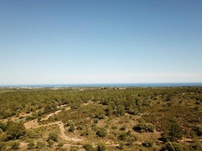 Magnificent rustic finca with sea and mountain views for sale between Manacor and Felanitx, Mallorca