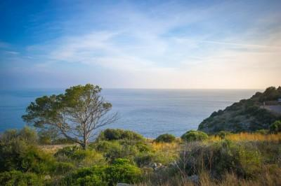Expected development land for sale in Puerto Andratx, Mallorca