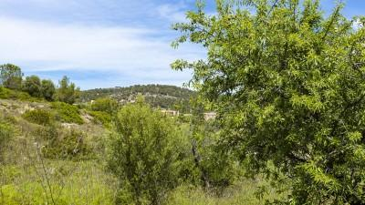 Building plot with views in Calvià, Mallorca