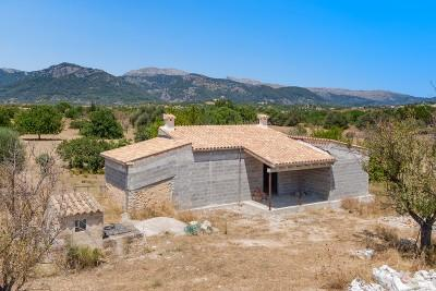 Country plot with potential, for sale in Campanet, Mallorca