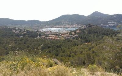 Rustic plot with license for sale in Puerto Andratx, Mallorca