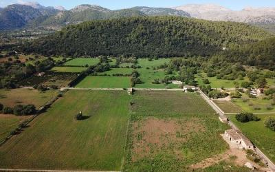 Beautiful plot with project of villa with pool in Campanet, Mallorca