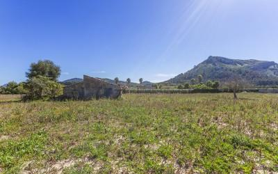 Rural plot with great potential for sale in Son Fe, Alcúdia, Mallorca