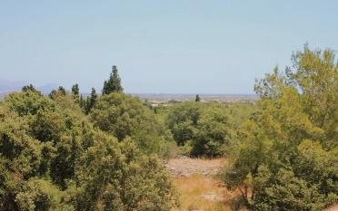 Country side plot with project in the area of Playa de Muro, Mallorca North