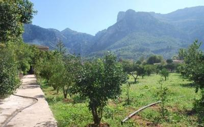 Country house for sale in Soller, Mallorca