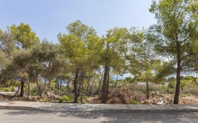 Plot for sale in south west of Mallorca
