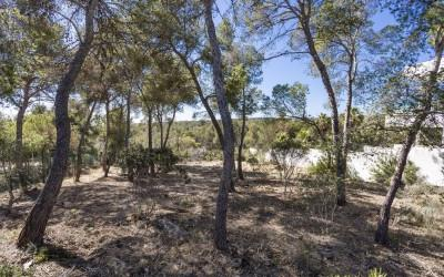 Plot in a picturesque location for sale in Cala Vinyes, Mallorca