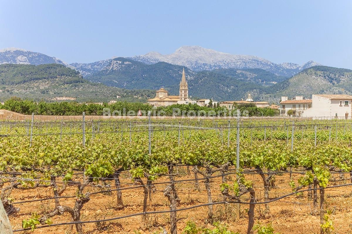 Country property with vineyard for sale in Binissalem, Mallorca