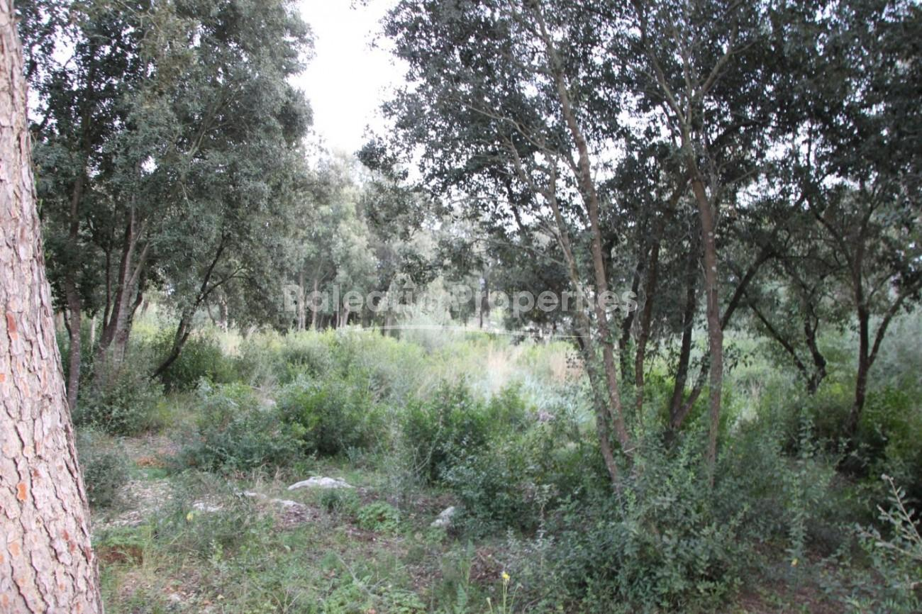 Plot with possibility to build two properties for sale in Crestatx, Pollensa, Mallorca